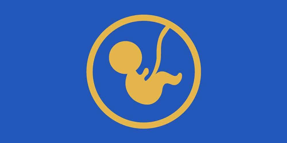 Doit-on donner la Zakât Al Fitr pour le fœtus  ?